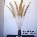 LAI1107-3