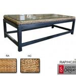 HC202-4/RAP202-4 MESA RATONA